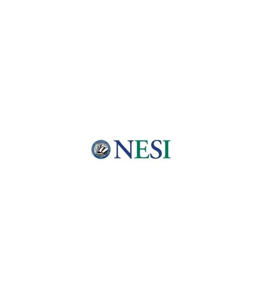https://www.webunlimited.com/wp-content/uploads/2012/04/nesi_logo.jpg